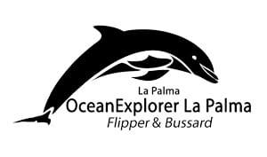 Paseo en barco en La Palma / Whale whatching La Palma
