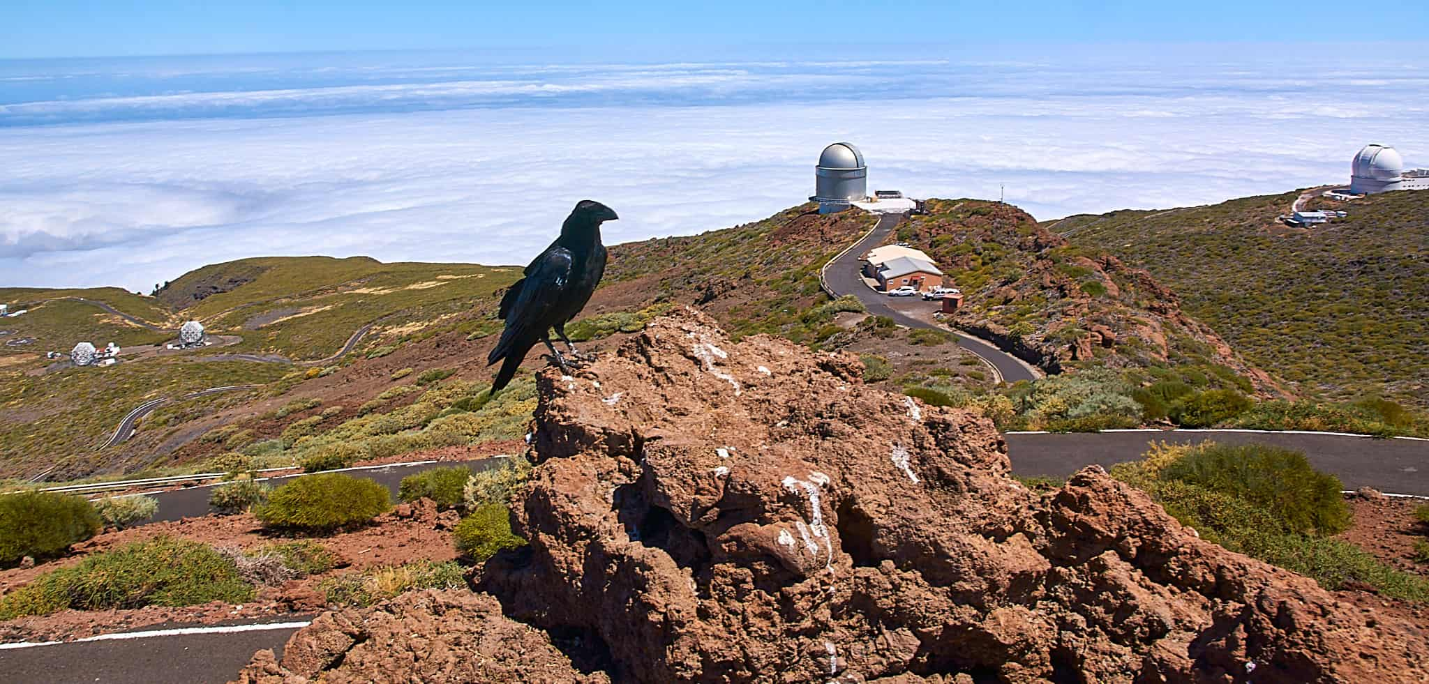 Senderismo Ruta Volcanes La Palma - Wandern - Trekking
