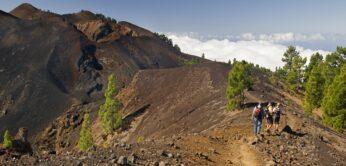 Senderismo con guia en La Palma